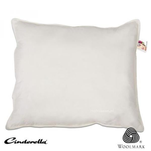 Lana hoofdkussen van het merk Cinderella
